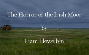 The Horror of the Irish Moor by Liam Llewellyn.